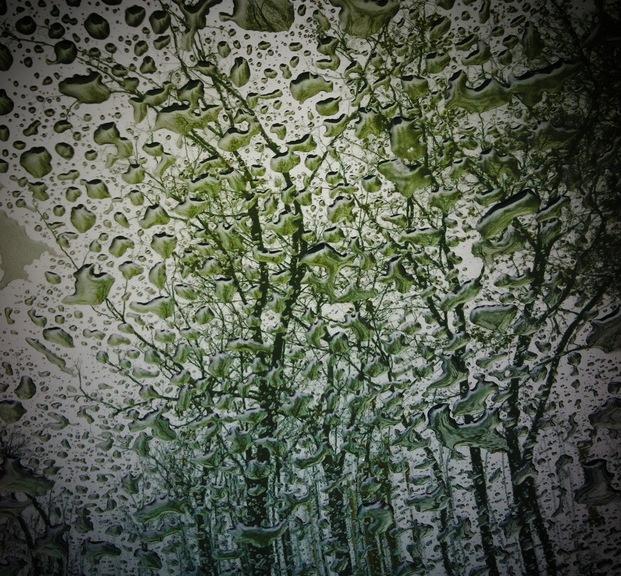 Max_height_rain03